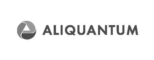 Aliquantum